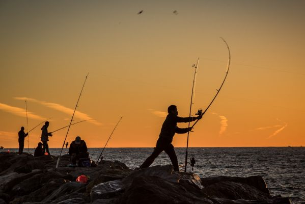 Long island news saturday november 14 2015 for Fishing on long island